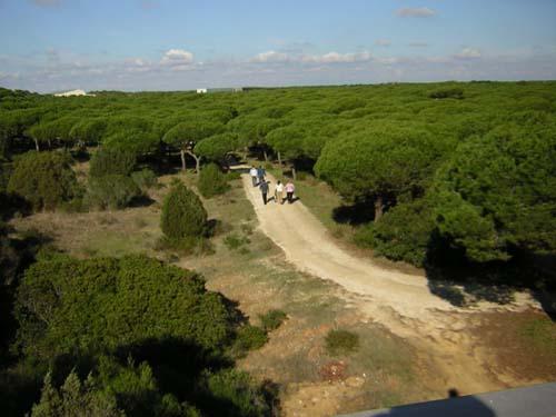 Camino Hacia El Museo Marino